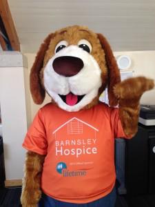 hospice dog
