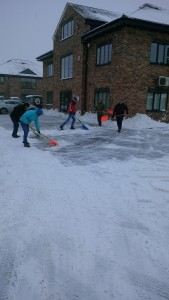 Lifetime team in snow - Copy